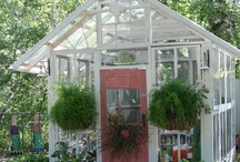 Greenhouse / by Karin Gasparotti