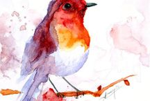 humming bird watercolor