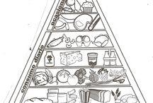 ciencias.alimentacion