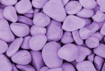 lila / lilac / purple / púrpura