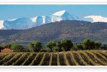 SOMONTANO / Enoturismo por una de las más ricas zonas de España, en vino, gastronomía y naturaleza. DO Somontano.