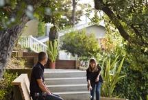 home : backyards / gardening / by AnnE Fredrick