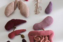 órgão de crochê
