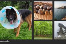 My photos on Shutterstock