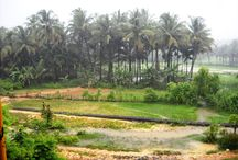 My GOA / Back to my roots !