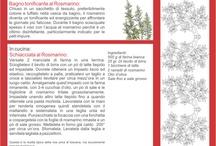 agenda giornaliera, una nuova avventura! / Settembre / by Urania Pantini