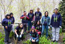 High Line Teens