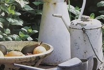 gardenlove & outdoor living  / gardenlove & outdoor living