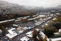 Snow in Gatlinburg / by Visit Gatlinburg