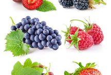 ovoce-zelenina