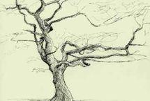 Per Olsen træer