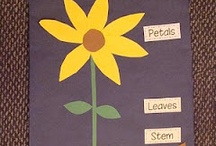 Science / by Time 4 Kindergarten