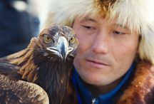 Special Offer Last Minute Tours! / Last minute places on amazing tours to Mongolia