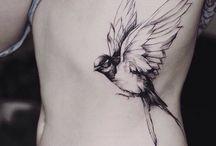 Эскизы Птицы