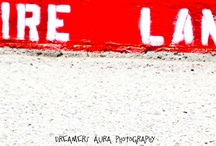 Signage and Words / Fire Lane / by Mishell Walton