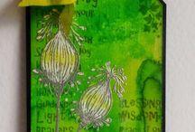 Cards - Lavinia