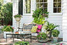 bahçe güzelliği