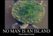 Funny! / by Jordan Marquess