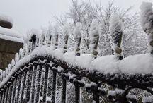 Winters Gloom