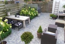 Ons tuin