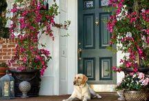 Vstupy do domu / Vstupní dveře, vchod, zádveří