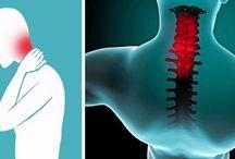 krcna chrbtica