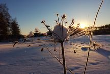 Suomi, Finland my homecountry
