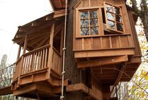 boomhut inspiratie / Treehouse, a boys dream