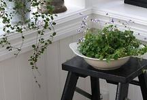 indoor gardens