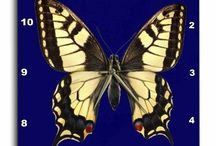 QUOTES BUTTERFLY