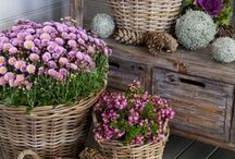 Garden Accessoires