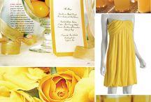 Colour Scheme: Yellow