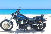Bikes in favorite places / by Harley-Davidson SXM