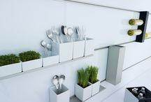 Kruidenplantjes en potjes