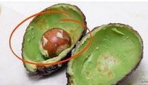 milagre do caroço de abacate