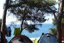 Camping/露營/キャンプ