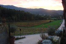 November time / #villacilnia #arezzo #sunset #tuscany #arezzo