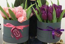 Cajas con flores