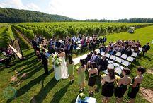 Vineyard Wedding Ideas / by Jodi Hollister