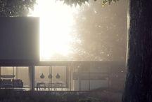 rendery