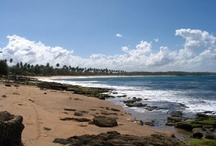 Travel / Puerto Rico-Best place in the world! / by Kim Katowitz