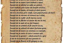 Poezii ❤️