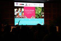 COP20 Día 2 / Conservación de Bosques