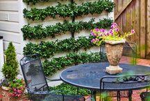 Zahrada / Reseni terasy