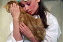 Breakfast At Tiffany's/Audrey Hepburn♡