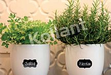 Etiqueta Lousa / Etiqueta Lousa em vários formatos