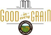 Ontario Grains Around the World