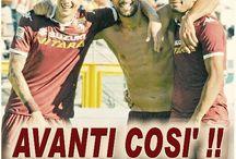 Torino FC 2015/2016 / Momenti della stagione 2015/16