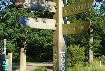 Northamptonshire & local places to go / Places for families to visit around Northamptonshire and surrounding areas.