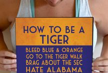 "War Eagle / Auburn University ""AUsomeness"" / by Courtney N"
